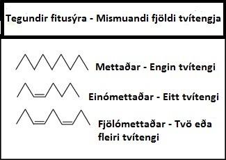 Fitusýrur